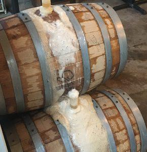 Wild Animal Barrels